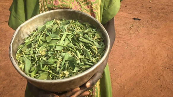 south-sudan-east-africa-crisis-appeal-food
